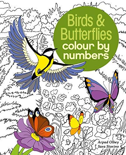 9781784286491: Birds & Butterflies Colour by Numbers