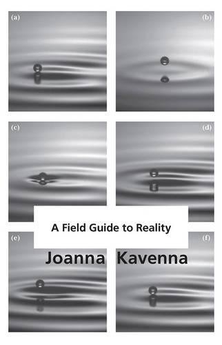 9781784292577: Field Guide to Reality
