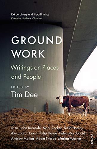 9781784703462: Ground Work