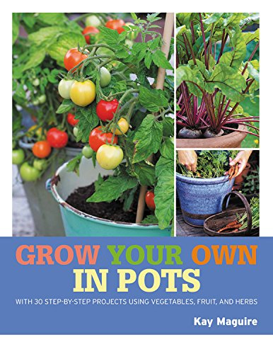 9781784724375: Grow Your Own in Pots: With 30 step-by-step projects using vegetables, fruit and herbs (Royal Horticultural Society Grow Your Own)