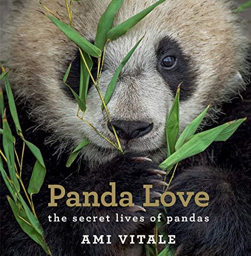 PANDA LOVE: VITALE A.