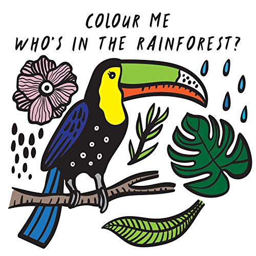 9781784930950: Colour Me: Who's in the Rainforest? (Wee Gallery Bath Books)