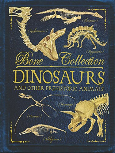 9781784931070: Bone Collections: Dinosaurs