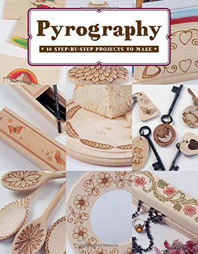 9781784941611: Pyrography: 18 Step-By-Step Projects to Make