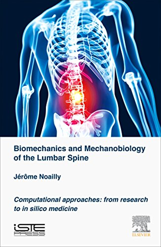 9781785480898: Biomechanics and Mechanobiology of the Lumbar Spine: Computational Approaches: From Research to In Silico Medicine