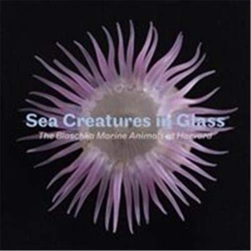 9781785510434: Sea Creatures in Glass: The Blaschka Marine Animals at Harvard
