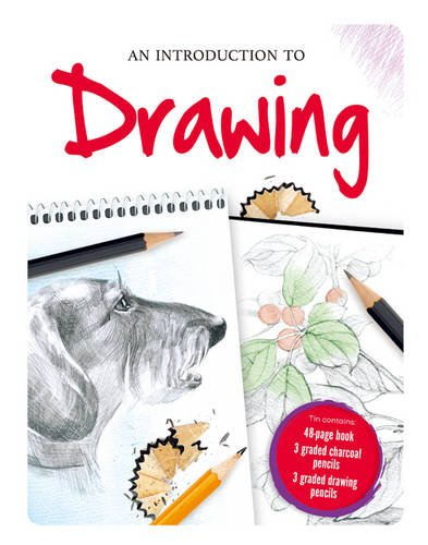 9781785578991: Drawing (Deluxe Ultimate Guide)
