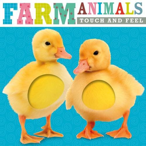 Farm Animals (Touch & Feel Series): Make Believe Ideas