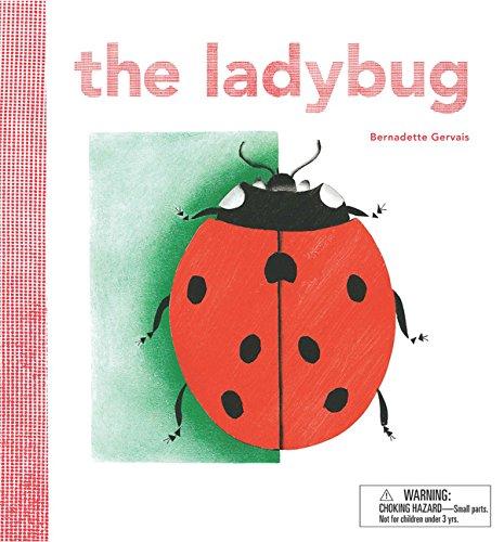 9781786270023: The Ladybug
