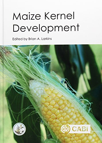 Maize Kernel Development: Dr Brian A