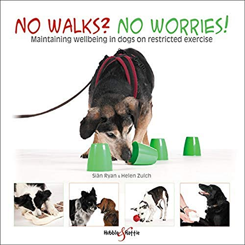 9781787115057: No walks? No worries!: Maintaining wellbeing in dogs on restricted exercise