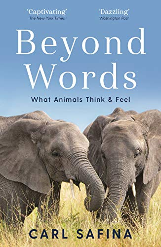 9781788164238: Beyond Words: What Animals Think and Feel