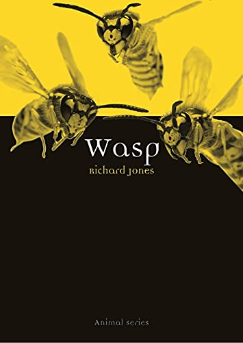 Wasp: Richard Jones