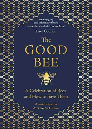 9781789290837: The Good Bee: A Celebration of Bees - And How to Save Them