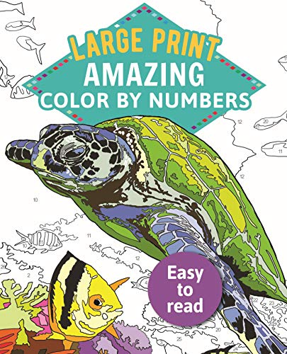 9781789500516: Amazing Color-By-Numbers Large Print: 7 (Arcturus Large Print Color by Numbers Collection)