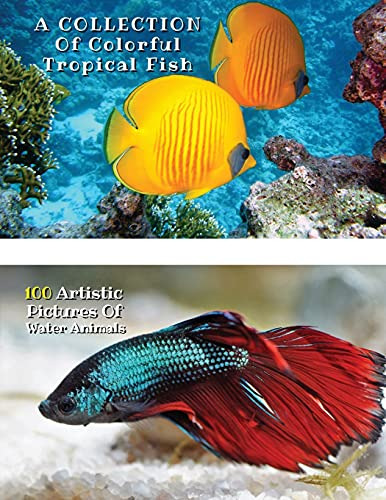 A Collection of Colorful Tropical Fish - 100 Artistic Pictures of Water Animals - Full Color HD