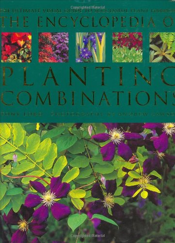 9781840000351: The Encyclopedia of Planting Combinations