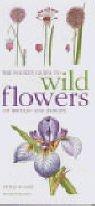 9781840002713: Mitchell Beazley Pocket Guide to Wild Flowers