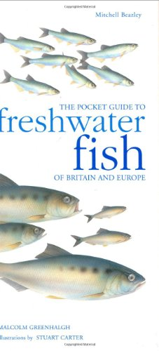 9781840003925: The Pocket Guide to Freshwater Fish of Britain and Europe