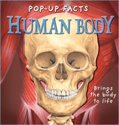 9781840117202: Pop-up Facts: Human Body