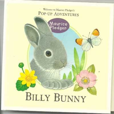 9781840118339: Billy Bunny