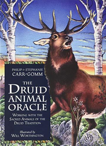 9781840134407: Druid Animal Oracle