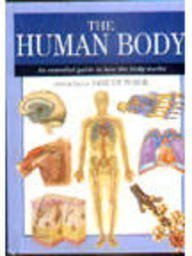 9781840135381: The Human Body: An Essential Guide to How the Body Works (Expert Guide)