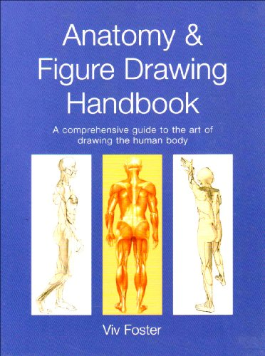 9781840137088: Anatomy & Figure Drawing Handbook