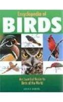 Encyclopedia of Birds: Derek Hall