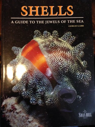 9781840371321: Shells: Guide to the Jewels of the Sea