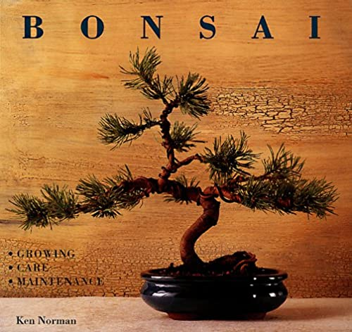 9781840381313: Create Your Own Bonsai