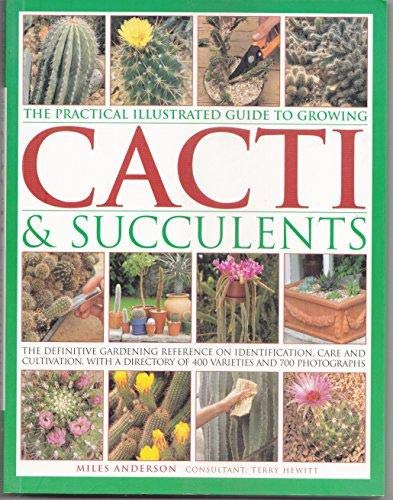 9781840388268: The Ultimate Book of Cacti & Succulents