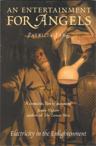 9781840464597: An Entertainment for Angels (Icon Science): Electricity in the Enlightenment