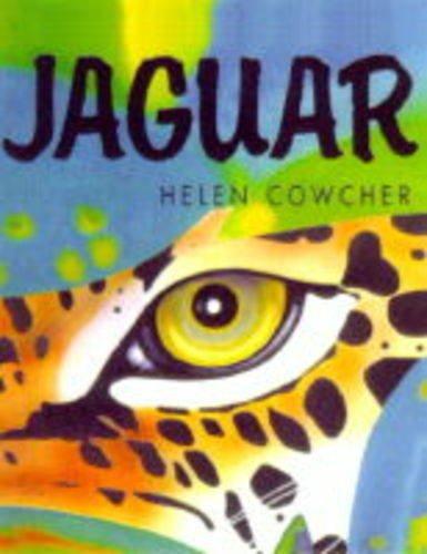 9781840590111: Jaguar (Helen Cowcher series)