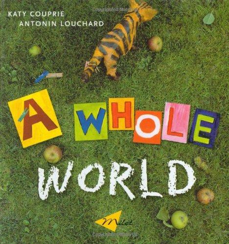 9781840593426: A Whole World