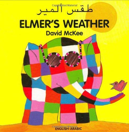 9781840594041: Elmer's Weather