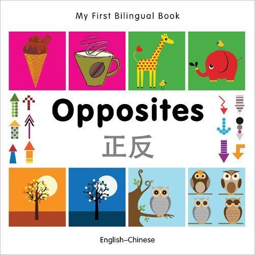 9781840597349: My First Bilingual Book–Opposites (English–Chinese)