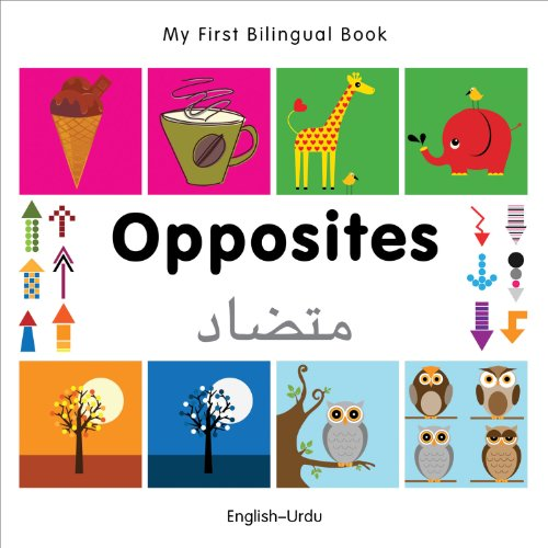 9781840597462: My First Bilingual Book–Opposites (English–Urdu)