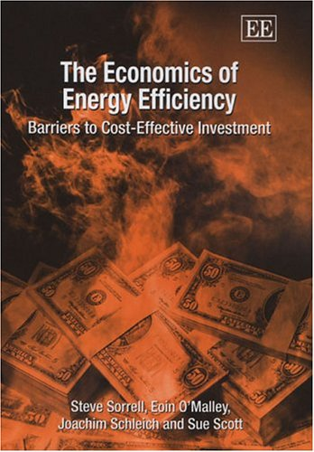 9781840648898: The Economics Of Energy Efficiency: Barriers to Cost-Effective Investment