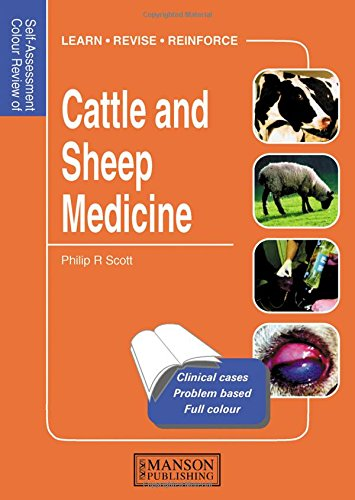 9781840761269: Cattle and Sheep Medicine: Self-Assessment Color Review (Veterinary Self-Assessment Color Review Series)