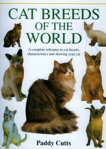Cat Breeds of the World: Paddy Cutts