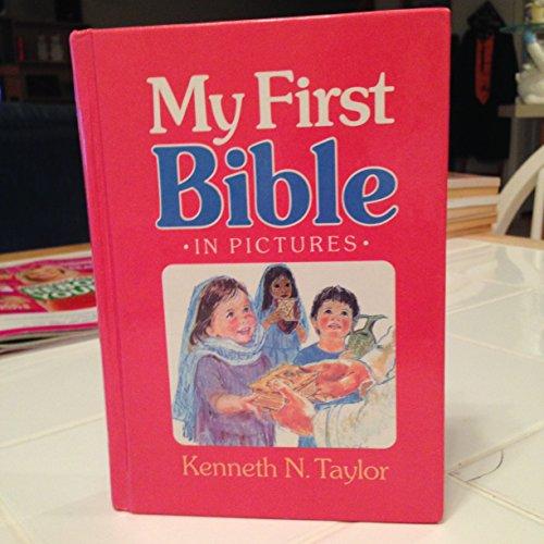 9781840845501: First Bible Stories