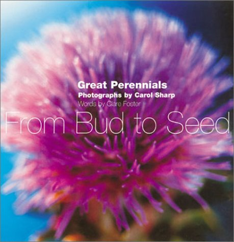 From Bud to Seed Ten Great Perennials