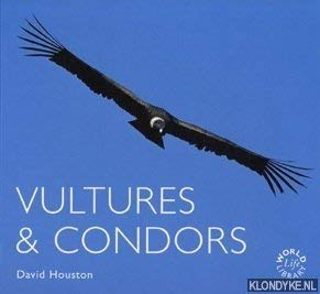 9781841070728: Vultures and Condors