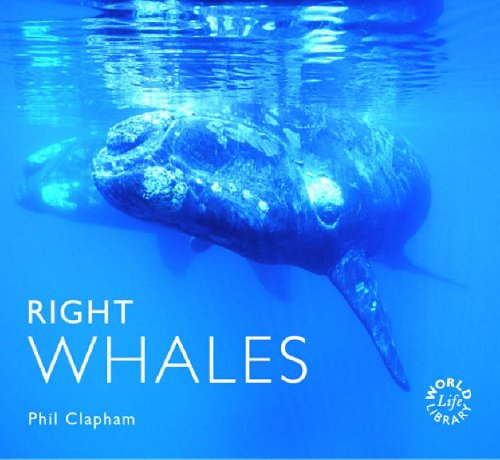 9781841072555: Right Whales (Worldlife Library)
