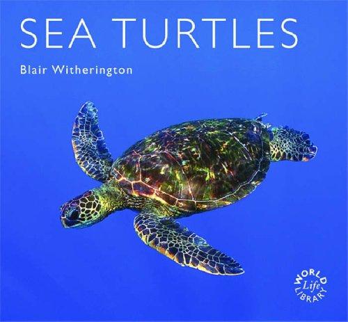 9781841073316: Sea Turtles (Worldlife Library)