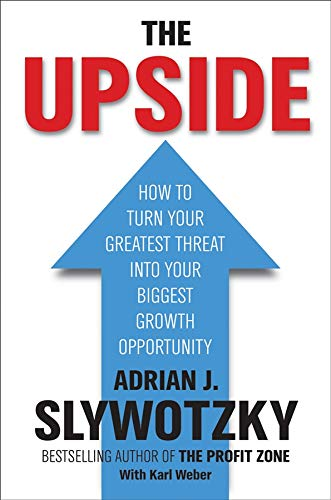 9781841127859: The Upside: From Risk Taking to Risk Shaping - How to Turn Your Greatest Threat into Your Biggest Growth Opportunity