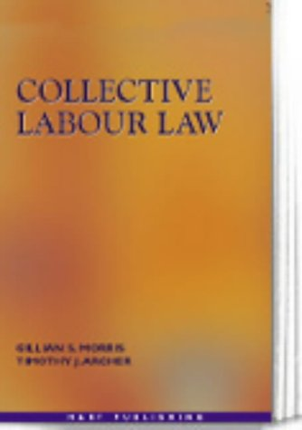 9781841130965: Collective Labour Law