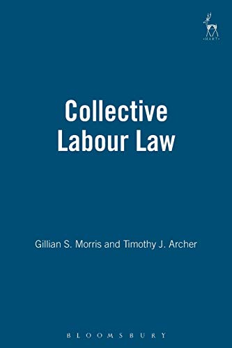 9781841131771: Collective Labour Law