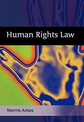 9781841133249: Human Rights Law